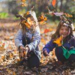 Børn leger i blade i skov